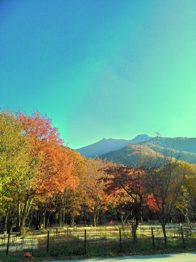 Jirusan dağının eteklerinde bir yer.